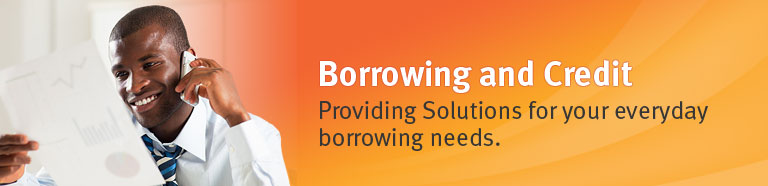 Borrowing and Credit - Providing Solutions for your everyday borrowing needs.