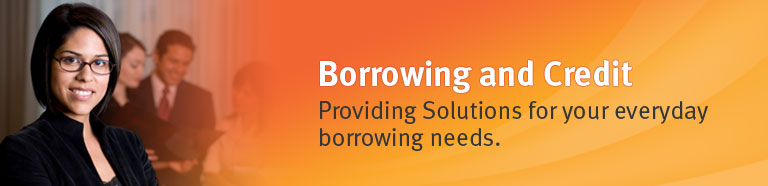 Borrowing and Credit. Providing Solutions for your everyday borrowing needs
