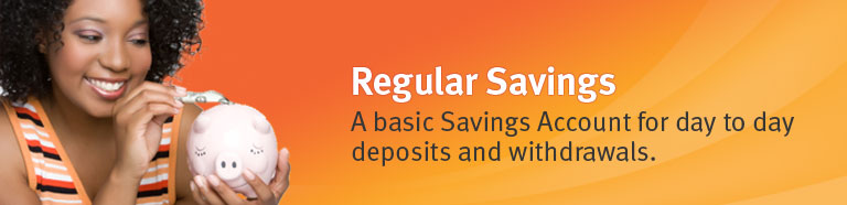 Regular Savings. A basic savings account for day to day deposits and withdrawals.